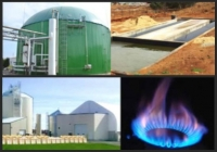 Biogas: how, why and where