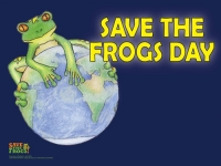 Help save our frogs this December