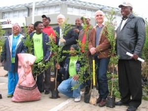 kwv plants 500 trees in paarl