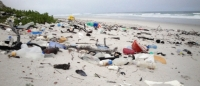 Plastics industry to host first African Marine Debris Summit