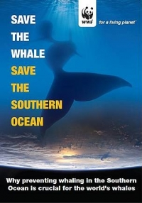 A chance to save the Southern Ocean