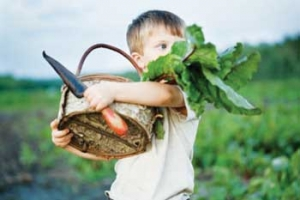 permaculture fertility speaks of abundance