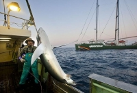 Illegal fishing in Mozambican waters robs people