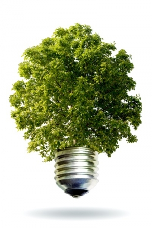 integrated energy efficiency ensures success