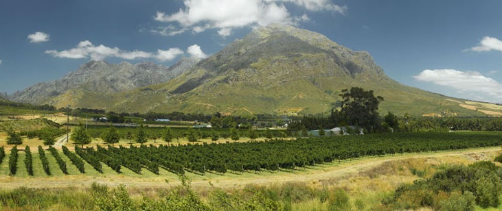 waverley hills organic farm