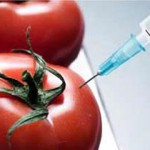 petition-for-labelling-gm-food-2-days-left