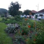 soil-community-project