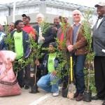 kwv-plants-500-trees-in-paarl
