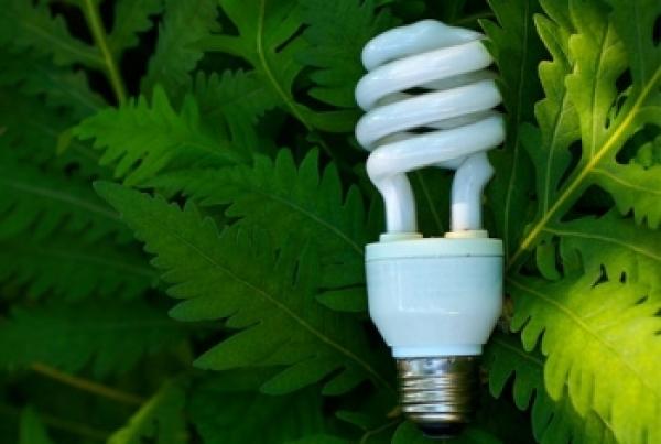 energy-saving-initiative