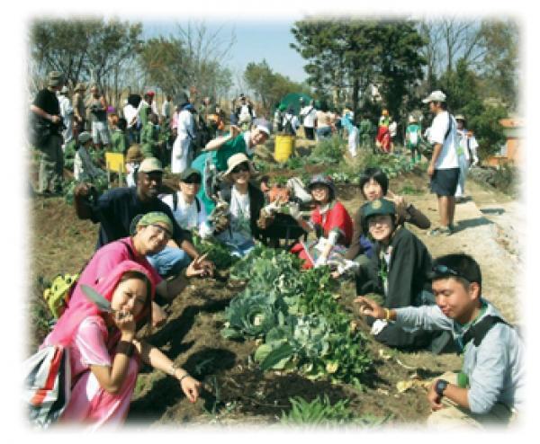 japanese-gardeners-help-gauteng-school