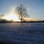 Winter_Sun2_by_James_D_Clarke