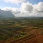 drylands_nedbank_green_carbon_neutral