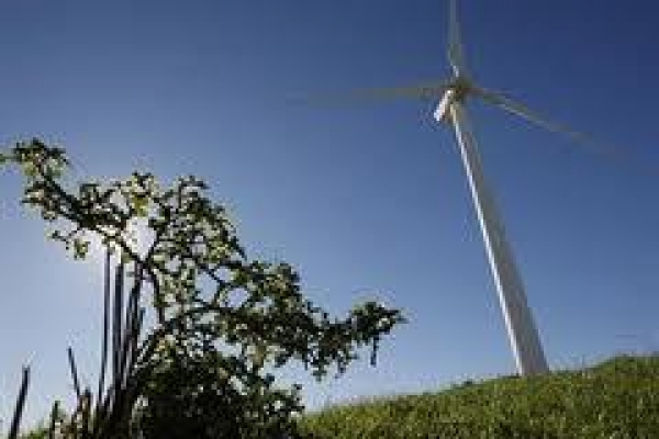 wind-power-conference-unites-south-african-wind-industry