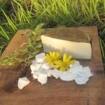 karoo_goat_cheese_arbeidsgenot_farm_lutzville2