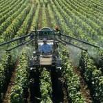 poison-spraying-vines--