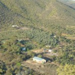 view_of_farm