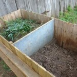 winter_stoep_harvest_compost_make_green_2