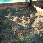 winter_stoep_harvest_compost_make_green_3