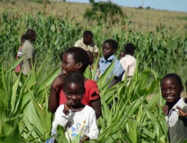 roadmap-towards-reduced-poverty
