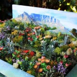 kirstenbosch-exhibit-off-to-chelsea