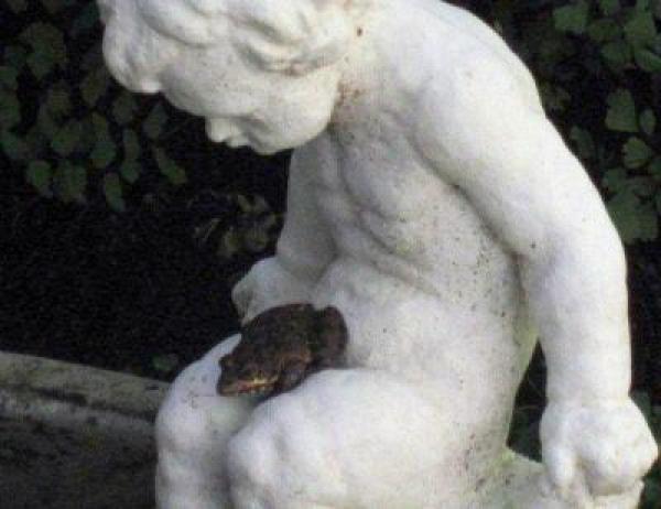 freddie-the-frog