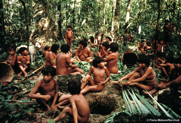 Brazils Yanomami