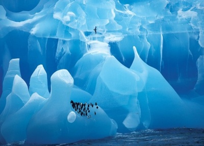 antarctic-legacy-project ice island research 3
