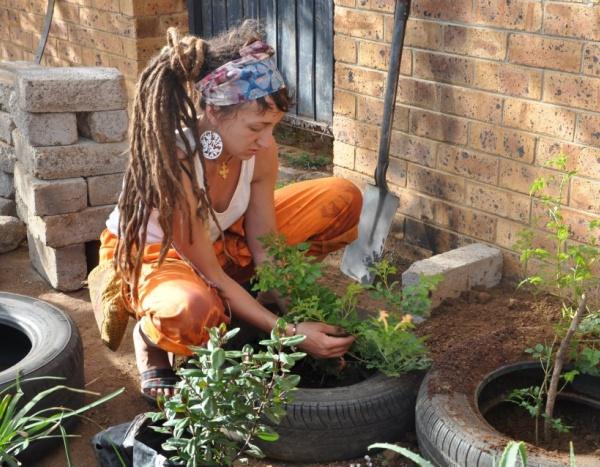 climate talk train tree planting painting eco4