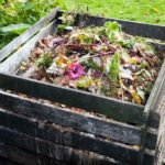 Time to start a compost heap