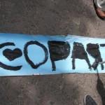 copart_cape_town_cop17_green