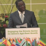 hunger-and-poverty-africa's-main-challenges