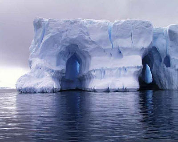 the-antarctic-legacy-project