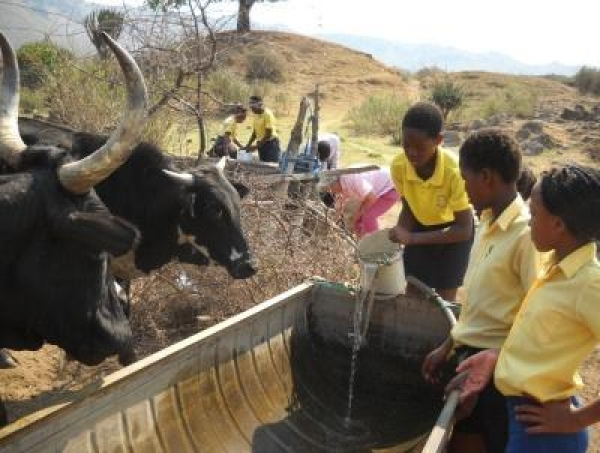 world-water-monitoring-day-in-sekhukhune