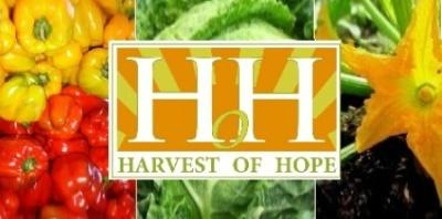 harvest hope gugulethu green event2
