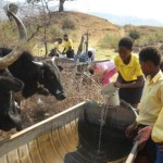 sebope_primary_world_water_monitor_well_1