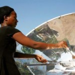 sunfire_solar_cookers_green_energy_eco_7