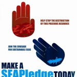 cop17s-sea-pledge-crusade