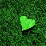 preparing-for-a-green-valentines-day