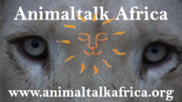 animaltalk-africa
