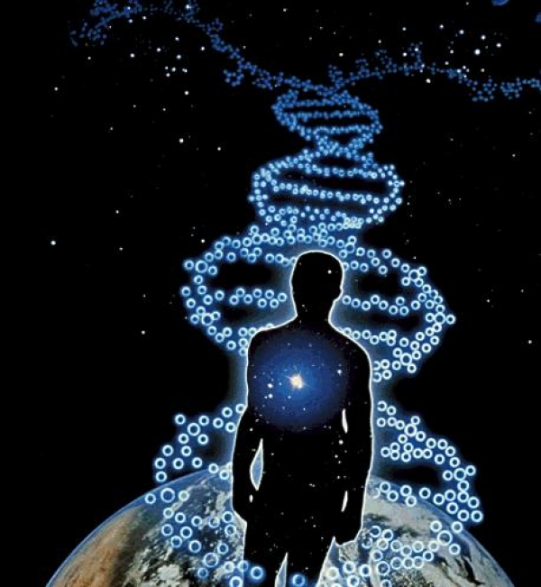 how-our-minds-can-reprogram-our-genes