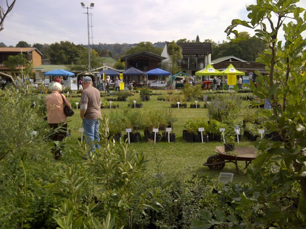 Sustainable Living and Indigenous Plant Fair -3