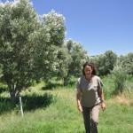 organic-pioneers-part-1-liz-eglington