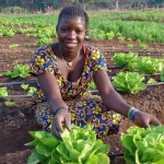 increasing-food-security-in-southern-africa