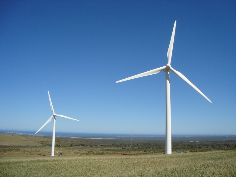 bats  wind power 1 - Darling Wind Farm