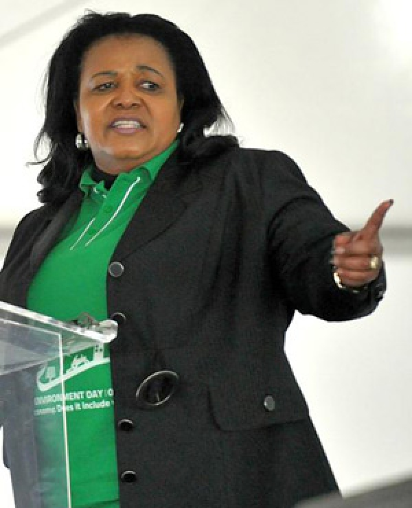 molewa-wants-to-create-300-000-green-jobs