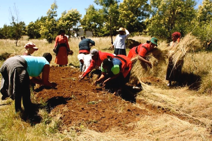 Project Lulutho - SEED Permaculture workshop