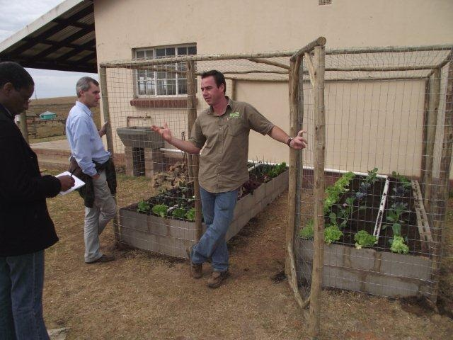 Woza Moya Project - grey water from playschool gravity-fed into goat-proof veggie garden