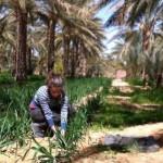 biodynamic-ambassadors-to-plant-new-roots