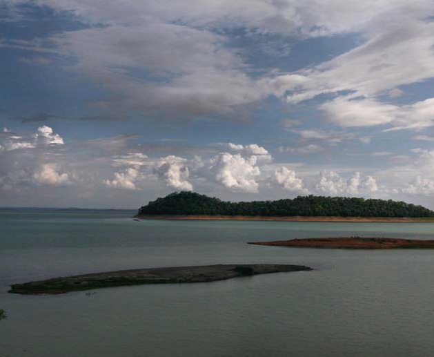 Greenpeace - endangered waters2