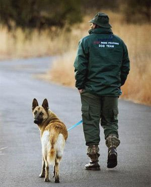 Rhino poaching - sniffer dog Russell2